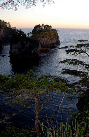 islands off Cape Flattery, Makah Nation, WA 7-12-2008