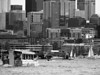 boats & buildings & duck on Lake Union, bw-Seattle, WA 6-2010