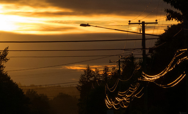 solar power-sun on power lines-North Bend Way, WA 6-6-2012