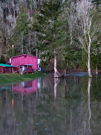 flooded pasture<br /> Fall City-Carnation Road