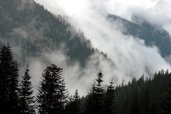 misty mountains-Mt Rainier NP, WA 5-2006