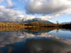 snow-capped Mount Si reflecting on the old Mill Pond-Snoqualmie, WA 1-19-2011