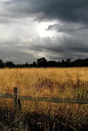 rain clouds rolling in over Marymoor dog park-Redmond, WA 7-30-2006