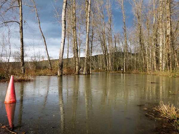 flooded road in Fall City campground-Snoqualmie River, WA 2-22-2012