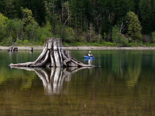 fisherman & stump-Rattlesnake Lake-North Bend, WA 4-2010