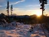 Mt  Rainier, snow & sunset-Huckleberry Ridge Rd-Hyak, WA 11-23-2008