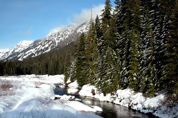 Cascade Mountains, meadow, stream-Snoqualmie Pass, WA 2-5-06