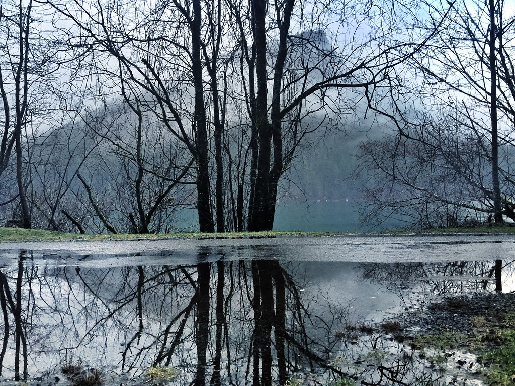 Rattlesnake Ledge reflecting in a puddle-North Bend, WA 1-22-2015