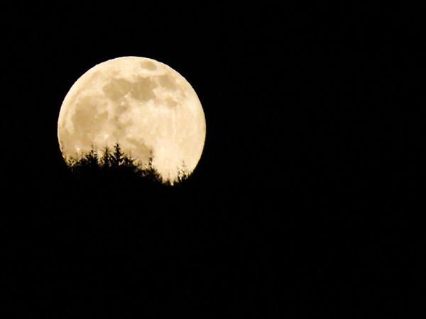moonrise near North Bend, WA 5-3-2015