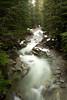 Denny Creek-view from bridge, en route to Franklin Falls-Exit 47, I-90, WA 12-1-2009