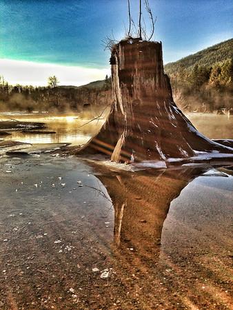 sun-streaked stump @ Rattlesnake Lake<br /> North Bend, WA