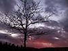 Issaquah, WA sunset 1/26/2012