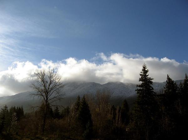 powdered hills above North Bend, WA 11-25-2006