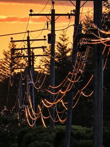 golden power lines-North Bend Way 6-2-2014_Snapseed