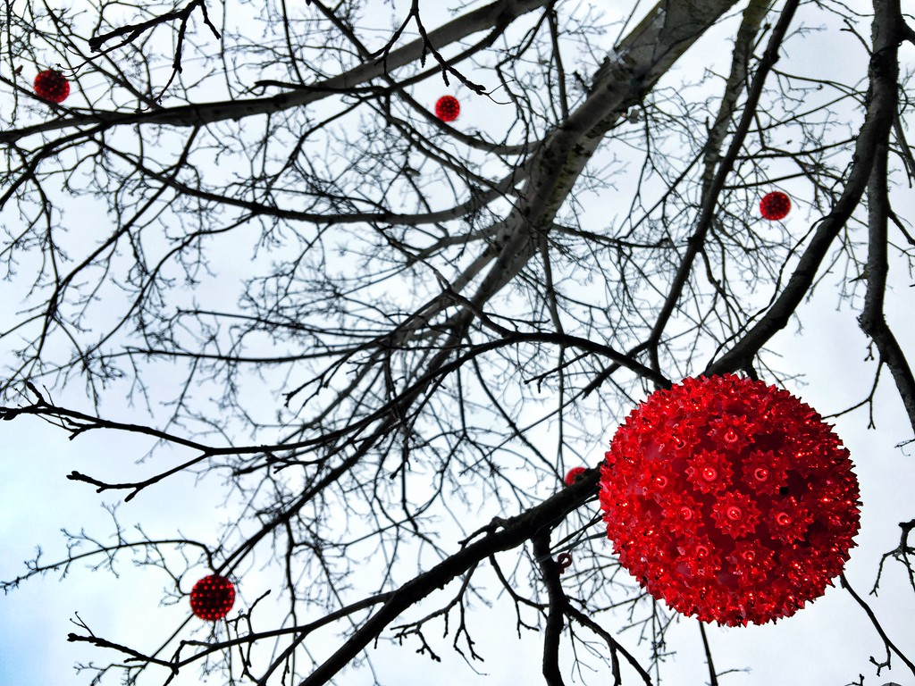red tree ball-lights in the trees-University Village, Seattle 2-7-2015