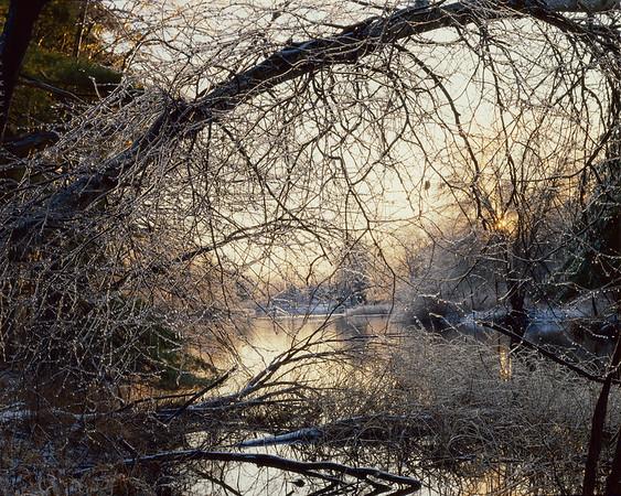 Ice Storm At Sunrise II