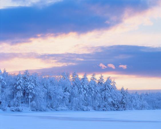 Snow at Sunset, Walden Pond