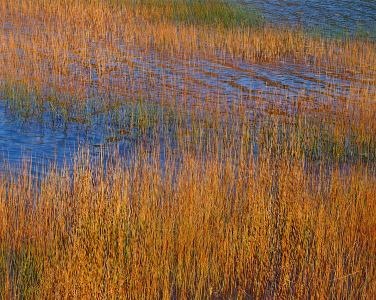 Upper Hadlock Pond, Maine