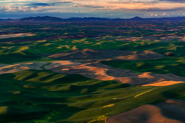 FERTILE FRONTIER: PALOUSE REGION, WASHINGTON