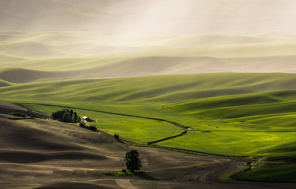 LIGHT RAIN: PALOUSE REGION, WASHINGTON