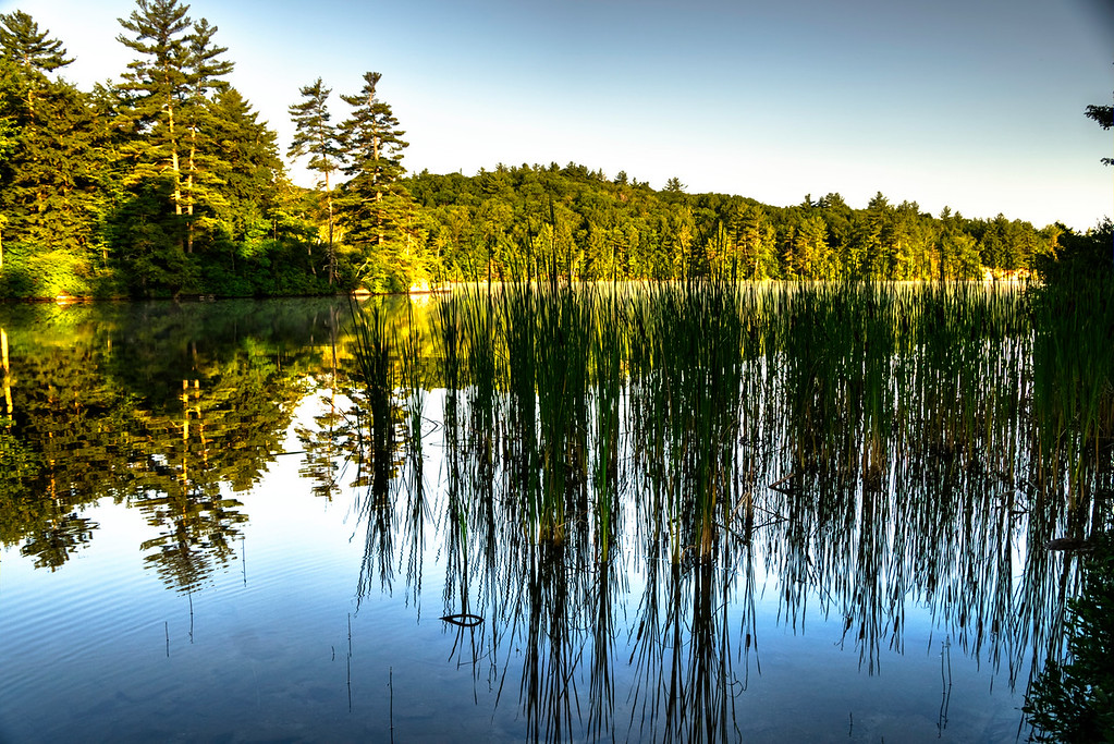 Early morning sunrise on Loon Pond