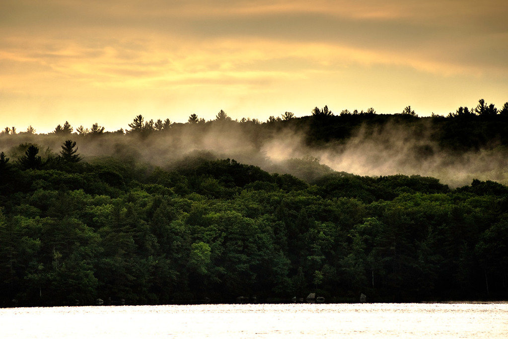 Fog rising behind Loon Pond