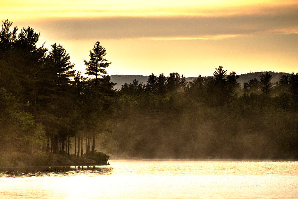 Fog rising from Loon Pond