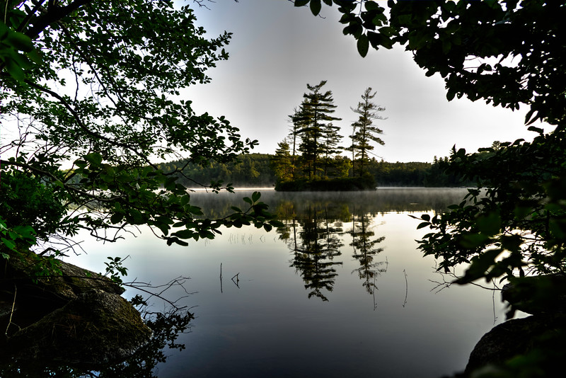 Floating Island of Loon Pond  through the fog