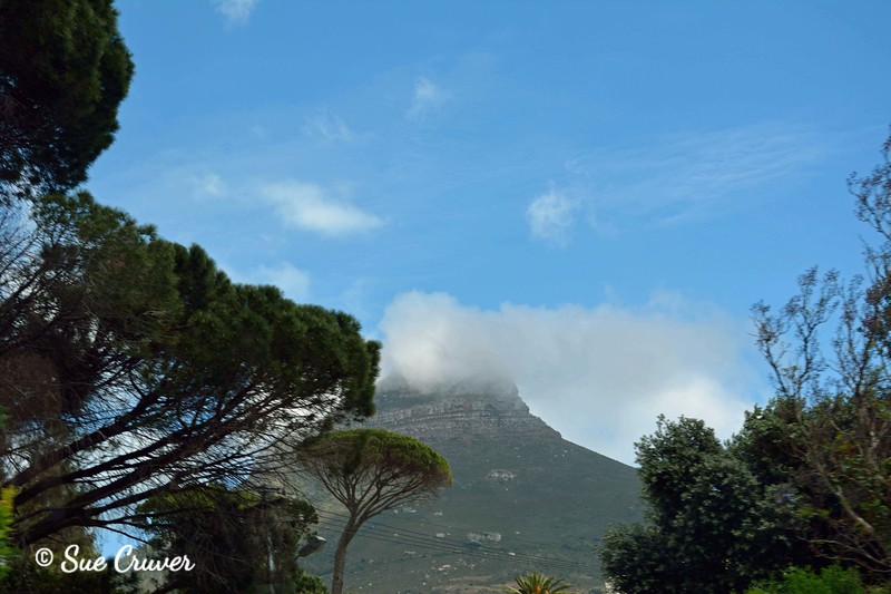 Lion's Head with Cloud and Trees