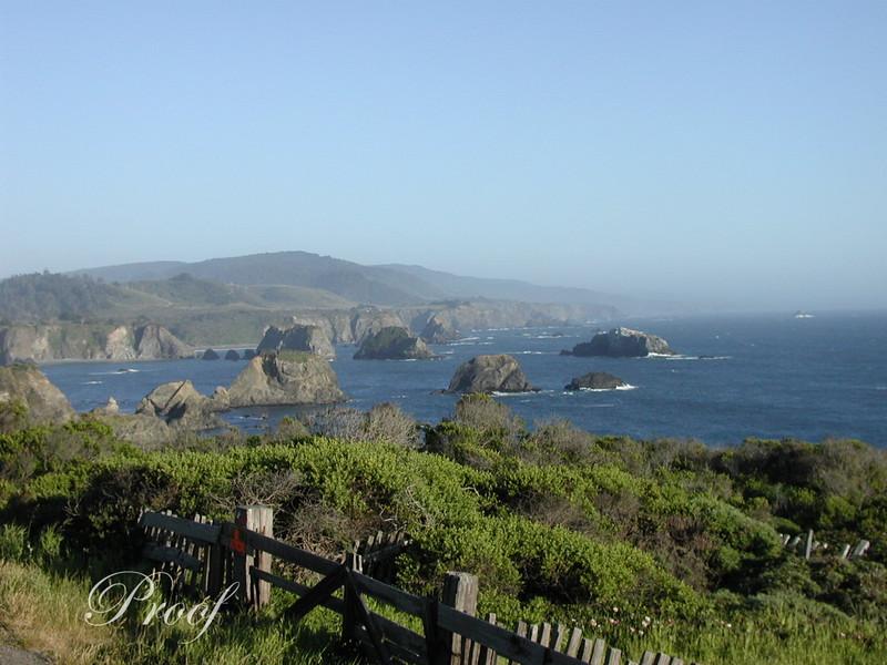 Pacific Coastline View