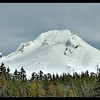 Mount Hood and the Palmer Snowfield