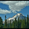 Summer On Mount Hood