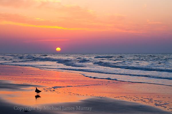 Folly Beach Sunrise, Folly Island, South Carolina.