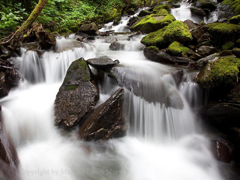 Brook along Thane Trail 3, Juneau, Alaska