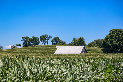 Barn in Corn