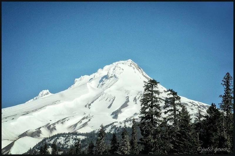 Mount Hood's South Side