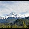 Mount Hood's West Face
