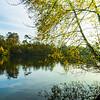 Blackpark Lake