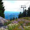 Timberline Ski Lift