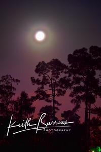 Full Moon, 2010, Wellington Florida