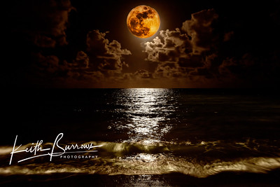 Super Moon 2011, West Palm Beach Florida