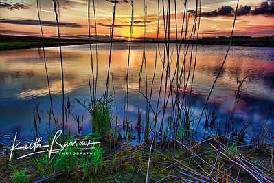 Reflections of a Beautiful Evening