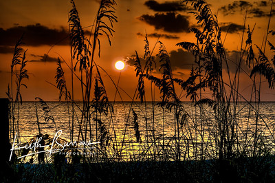 Golden Captiva Sunset, Captiva Island, Florida