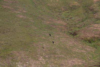 Breezley Hills_-27