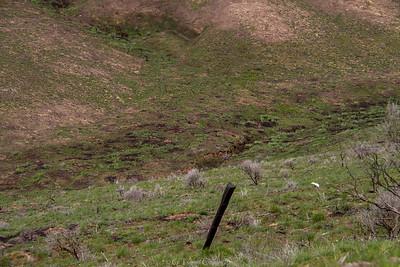 Breezley Hills_-26