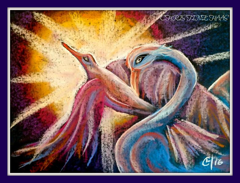 VISION BIRDS OF LIGHT