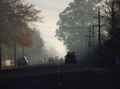 20110609 0824 Greytown mist _MG_8685a