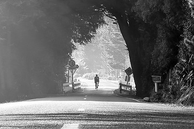 Photos taken in the early morning light of Craig Mathews cycling in the Blue Mountains, Upper Hutt, Wellington, New Zealand on 26 May 2017.  Copyright: John Mathews 2017    www.megasportmedia.co.nz