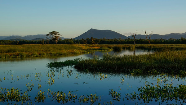 Glen Isla wetlands, near Proserpine. We were hoping for a fine sunset but all the clouds dissapered leaving nothing but clear skies. Stll, the low light did create an interesting mood and colours.