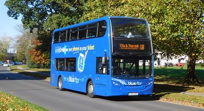 BlueStar 1550 - HJ63JKZ - Millbrook (Kendal Avenue)